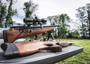 Types of airguns - spring, CO2, PCA, PCP
