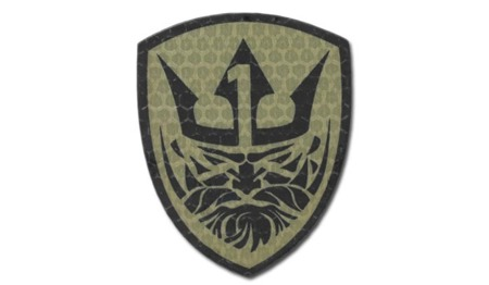 Combat-ID - Patch AFO Team Neptune One - Coyote Tan - Gen I